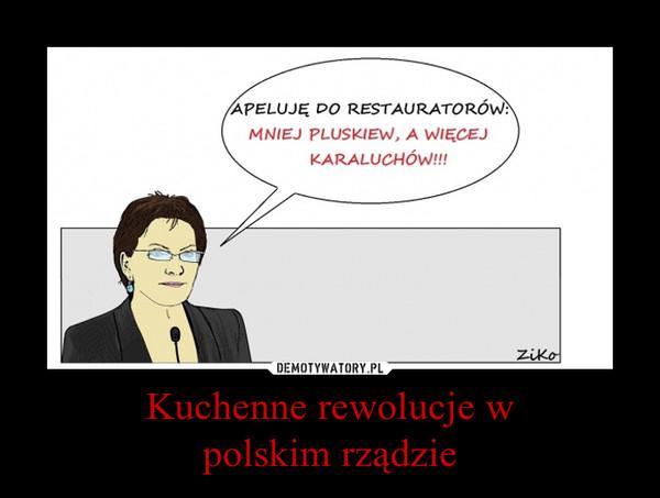 Kuchenne rewolucje wpolskim rządzie –
