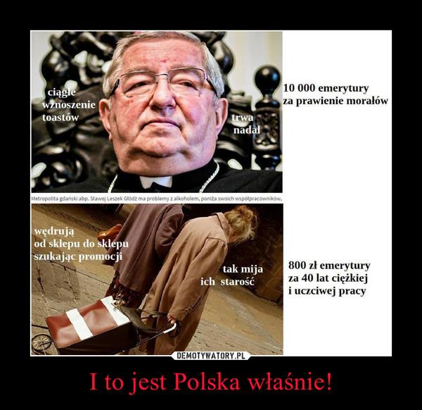 I to jest Polska właśnie! –