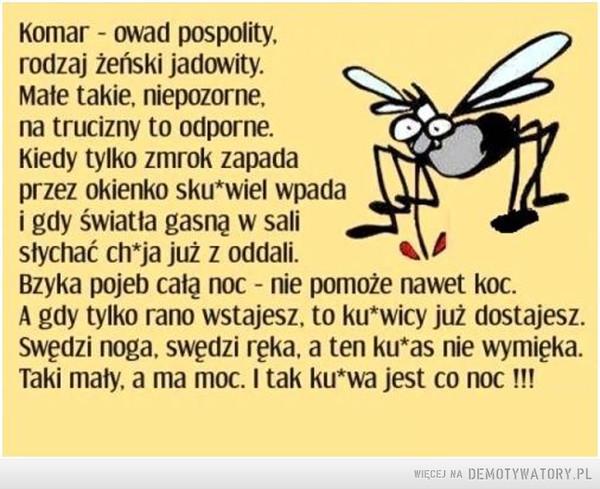 Cholerny komar –  Komar - owad pospolity, rodzaj żeński jadowity. Mate takie, niepozorne, na trucizny to odporne. Kiedy tylko zmrok zapada przez okienko sku*wiel wpada i gdy światła gasnę w sali słychać chla już z oddali. k 4$ Bzyka pojeb całą noc - nie pomoże nawet koc. A gdy tylko rano wstajesz, to ku*wicy już dostajesz. Swędzi noga, swędzi ręka, a ten ku*as nie wymięka. Taki mały, a ma moc. I tak ku*wa jest co noc !!!
