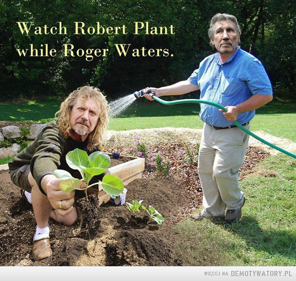 Watch Robert Plant while Roger Waters –