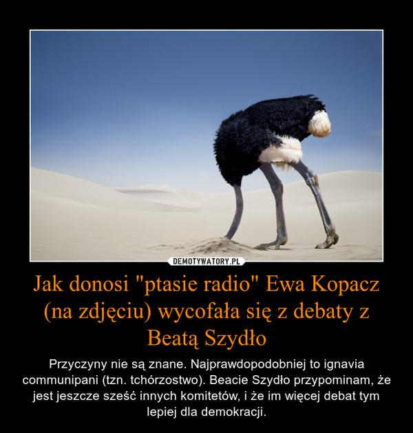 """Jak donosi """"ptasie radio"""" Ewa Kopacz (na zdjęciu) wycofała się z debaty z Beatą Szydło – Przyczyny nie są znane. Najprawdopodobniej to ignavia communipani (tzn. tchórzostwo). Beacie Szydło przypominam, że jest jeszcze sześć innych komitetów, i że im więcej debat tym lepiej dla demokracji."""