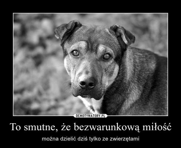 To smutne, że bezwarunkową miłość – można dzielić dziś tylko ze zwierzętami