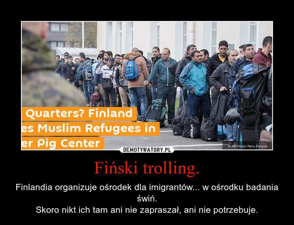 Fiński trolling. – Finlandia organizuje ośrodek dla imigrantów... w ośrodku badania świń.Skoro nikt ich tam ani nie zapraszał, ani nie potrzebuje.