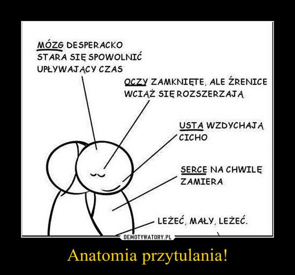 Anatomia przytulania! –