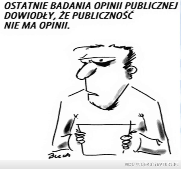 Badania opinii –