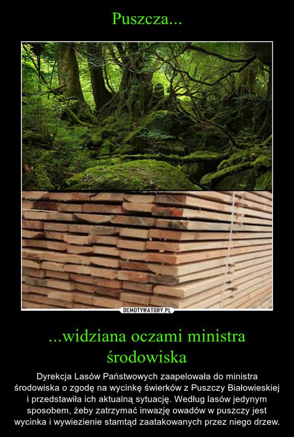 ...widziana oczami ministra środowiska – Dyrekcja Lasów Państwowych zaapelowała do ministra środowiska o zgodę na wycinkę świerków z Puszczy Białowieskiej i przedstawiła ich aktualną sytuację. Według lasów jedynym sposobem, żeby zatrzymać inwazję owadów w puszczy jest wycinka i wywiezienie stamtąd zaatakowanych przez niego drzew.