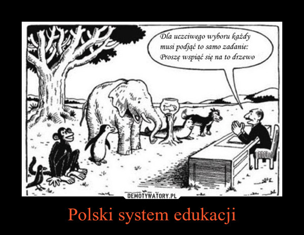 Polski system edukacji –