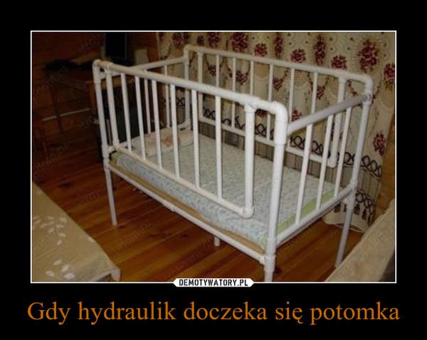 Gdy hydraulik doczeka się potomka –