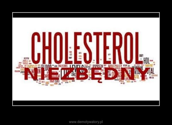 Cholesterol nie taki zły.... –