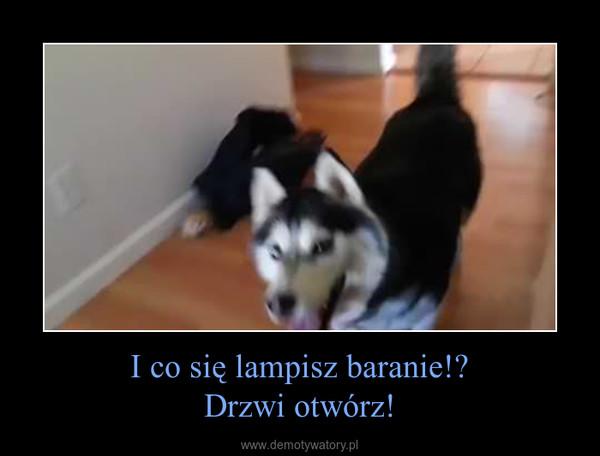 I co się lampisz baranie!?Drzwi otwórz! –