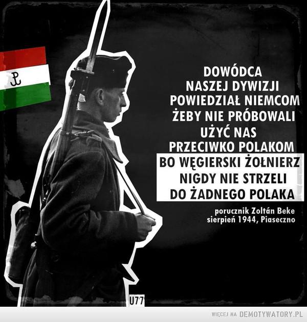 Polak, Węgier - dwa bratanki –  DOWÓDCA NASZEJ DYWIZJI POWIEDZIAŁ NIEMCOM ŻEBY NIE PRÓBOWALI UŻYĆ NAS PRZECIWKO POLAKOM BO WĘGIERSKI ŻOŁNIERZ NIGDY NIE STRZELI DO ŻADNEGO POLAKAPorucznik Zoltan bekeSierpień 1944, Piaseczno