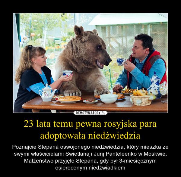 23 lata temu pewna rosyjska para adoptowała niedźwiedzia – Poznajcie Stepana oswojonego niedźwiedzia, który mieszka ze swymi właścicielami Swietłaną i Jurij Panteleenko w Moskwie. Małżeństwo przyjęło Stepana, gdy był 3-miesięcznym osieroconym niedźwiadkiem