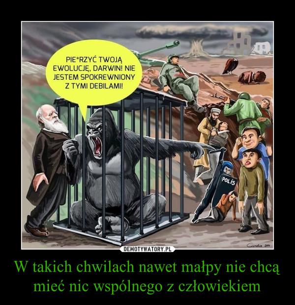 W takich chwilach nawet małpy nie chcą mieć nic wspólnego z człowiekiem –  PIEPRZYĆ TWOJĄ EWOLUCJĘ, DARWINI NIE JESTEM SPOKREWNIONY Z TYMI DEBILAMI