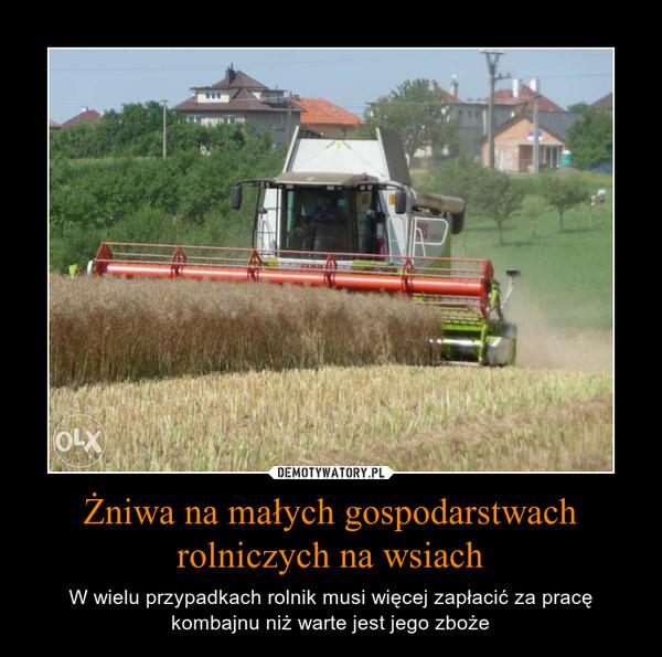 Żniwa na małych gospodarstwach rolniczych na wsiach – W wielu przypadkach rolnik musi więcej zapłacić za pracę kombajnu niż warte jest jego zboże