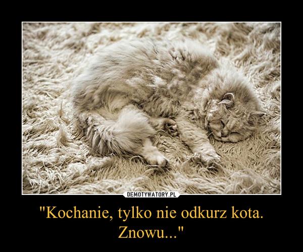 """""""Kochanie, tylko nie odkurz kota. Znowu..."""" –"""