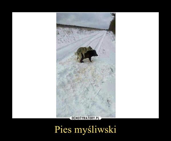 Pies myśliwski –