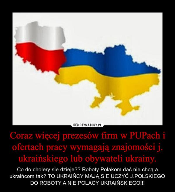 Coraz więcej prezesów firm w PUPach i ofertach pracy wymagają znajomości j. ukraińskiego lub obywateli ukrainy. – Co do cholery sie dzieje?? Roboty Polakom dać nie chcą a ukraińcom tak? TO UKRAIŃCY MAJĄ SIE UCZYĆ J.POLSKIEGO DO ROBOTY A NIE POLACY UKRAIŃSKIEGO!!!