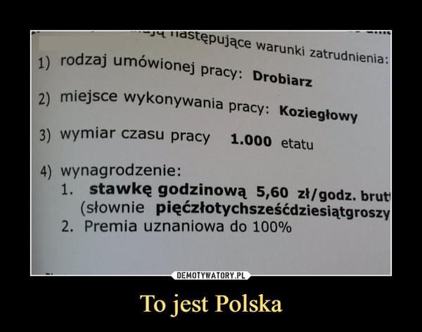 To jest Polska –