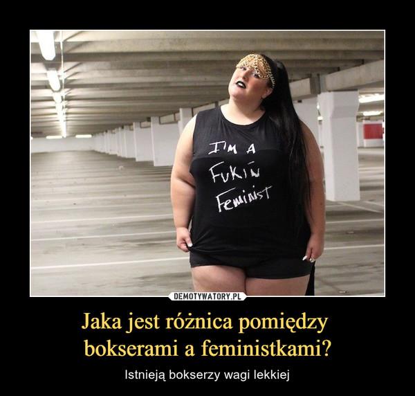 Jaka jest różnica pomiędzy bokserami a feministkami? – Istnieją bokserzy wagi lekkiej