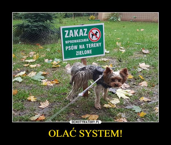 OLAĆ SYSTEM! –