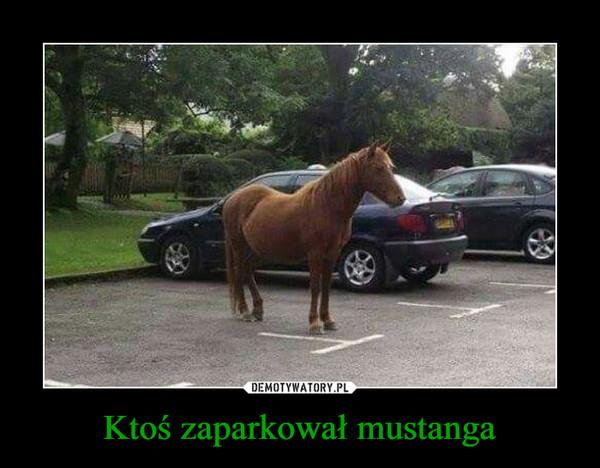 Ktoś zaparkował mustanga –