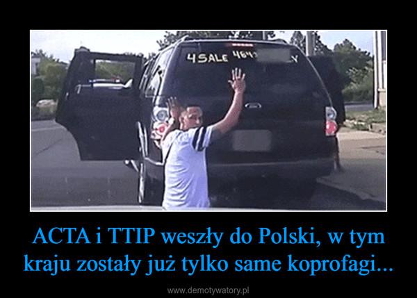 ACTA i TTIP weszły do Polski, w tym kraju zostały już tylko same koprofagi... –