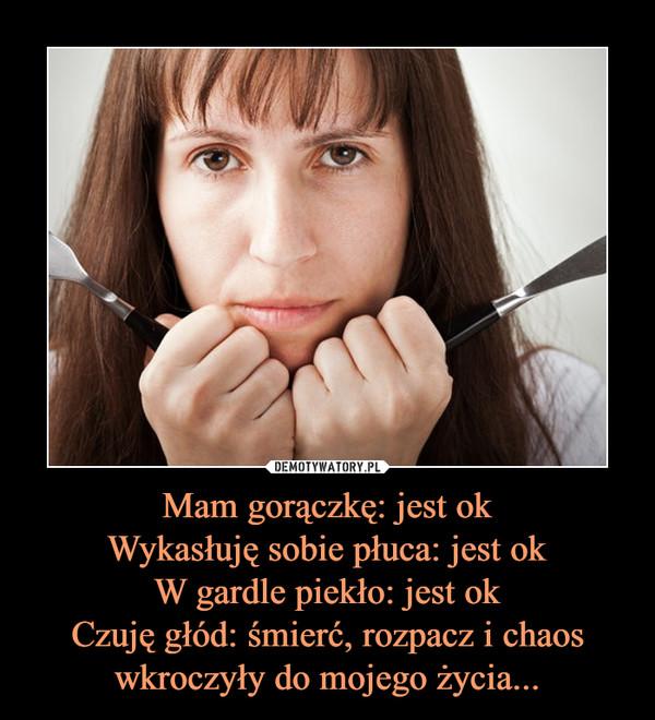 Mam gorączkę: jest okWykasłuję sobie płuca: jest okW gardle piekło: jest okCzuję głód: śmierć, rozpacz i chaos wkroczyły do mojego życia... –
