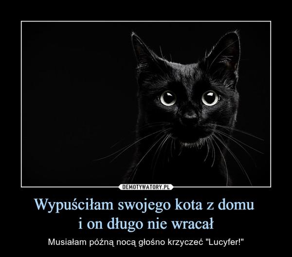 """Wypuściłam swojego kota z domu i on długo nie wracał – Musiałam późną nocą głośno krzyczeć """"Lucyfer!"""""""