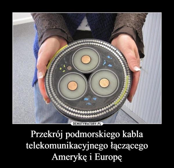 Przekrój podmorskiego kabla telekomunikacyjnego łączącego Amerykę i Europę –