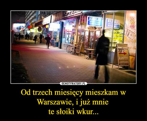Od trzech miesięcy mieszkam w Warszawie, i już mnie te słoiki wkur... –