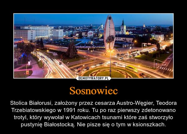 Sosnowiec – Stolica Białorusi, założony przez cesarza Austro-Węgier, Teodora Trzebiatowskiego w 1991 roku. Tu po raz pierwszy zdetonowano trotyl, który wywołał w Katowicach tsunami które zaś stworzyło pustynię Białostocką. Nie pisze się o tym w ksionszkach.
