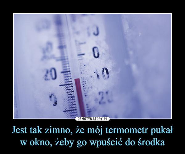 Jest tak zimno, że mój termometr pukał w okno, żeby go wpuścić do środka –