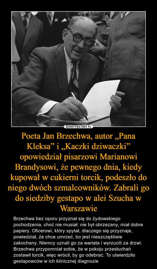 """Poeta Jan Brzechwa, autor """"Pana Kleksa"""" i """"Kaczki dziwaczki"""" opowiedział pisarzowi Marianowi Brandysowi, że pewnego dnia, kiedy kupował w cukierni torcik, podeszło do niego dwóch szmalcowników. Zabrali go do siedziby gestapo w alei Szucha w Warszawie – Brzechwa bez oporu przyznał się do żydowskiego pochodzenia, choć nie musiał: nie był obrzezany, miał dobre papiery. Oficerowi, który spytał, dlaczego się przyznaje, powiedział, że chce umrzeć, bo jest nieszczęśliwie zakochany. Niemcy uznali go za wariata i wyrzucili za drzwi. Brzechwa przypomniał sobie, że w pokoju przesłuchań zostawił torcik, więc wrócił, by go odebrać. To utwierdziło gestapowców w ich klinicznej diagnozie"""