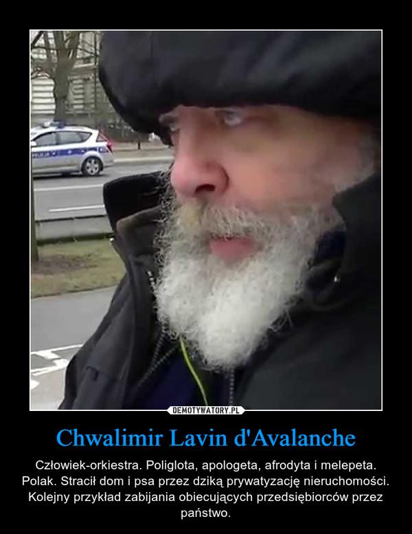 Chwalimir Lavin d'Avalanche – Człowiek-orkiestra. Poliglota, apologeta, afrodyta i melepeta. Polak. Stracił dom i psa przez dziką prywatyzację nieruchomości. Kolejny przykład zabijania obiecujących przedsiębiorców przez państwo.