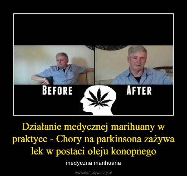 Działanie medycznej marihuany w praktyce - Chory na parkinsona zażywa lek w postaci oleju konopnego – medyczna marihuana