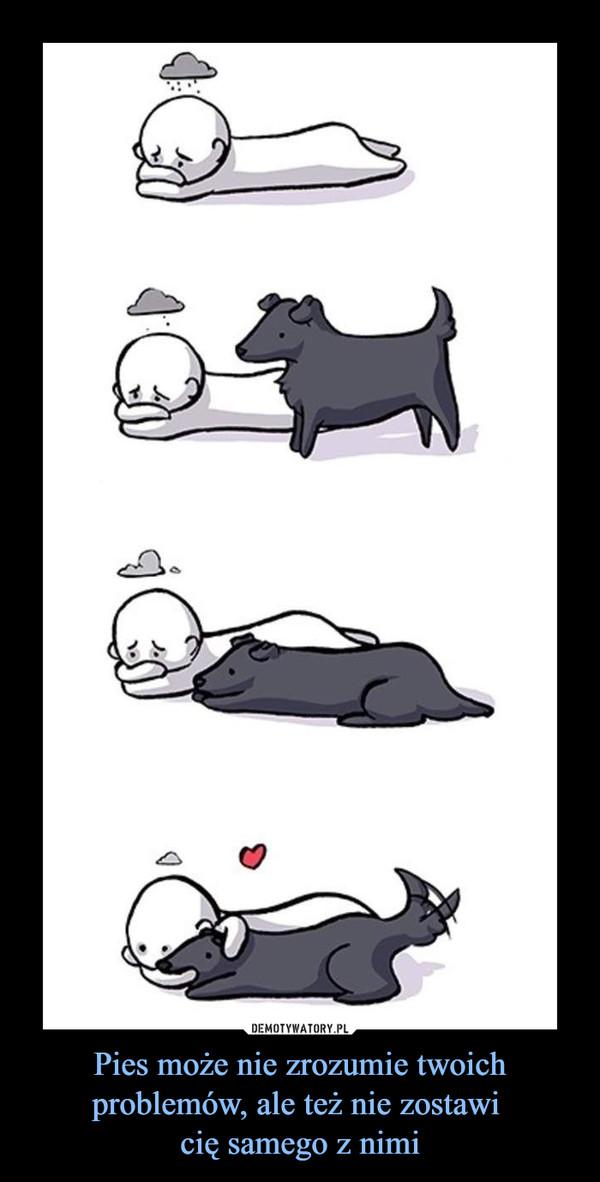 Pies może nie zrozumie twoich problemów, ale też nie zostawi cię samego z nimi –