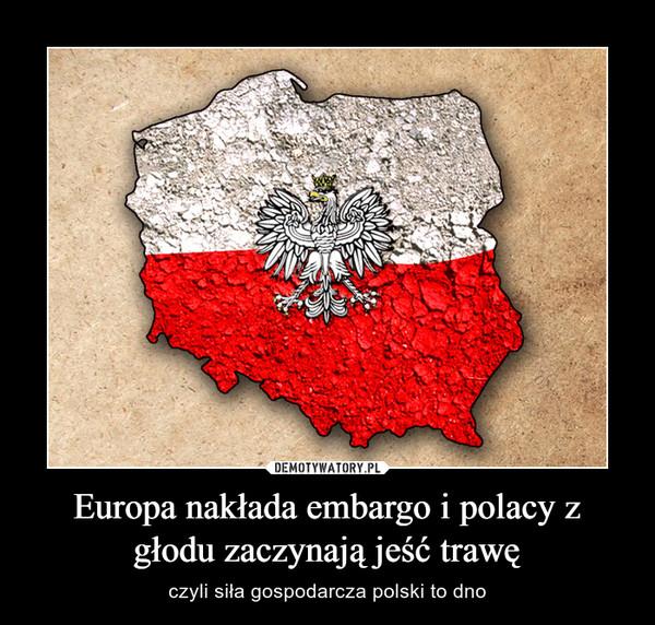 Europa nakłada embargo i polacy z głodu zaczynają jeść trawę – czyli siła gospodarcza polski to dno