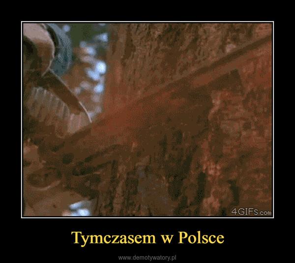 Tymczasem w Polsce –
