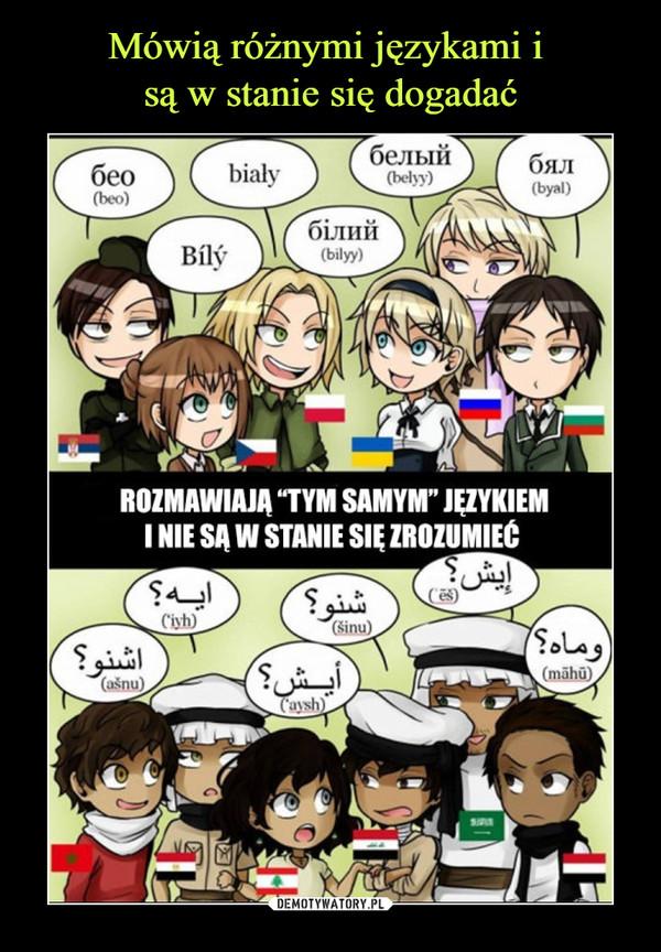 –  Rozmawiają tym samym językiem i nie są w stanie nic zrozumieć
