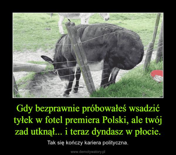 Gdy bezprawnie próbowałeś wsadzić tyłek w fotel premiera Polski, ale twój zad utknął... i teraz dyndasz w płocie. – Tak się kończy kariera polityczna.
