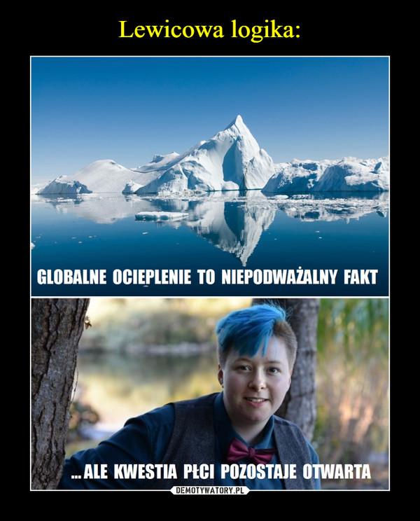 –  GLOBALNE OCIEPLENIE TO NIEPODWAŻALNY FAKT... ALE KWESTIA PŁCI POZOSTAJE OTWARTA