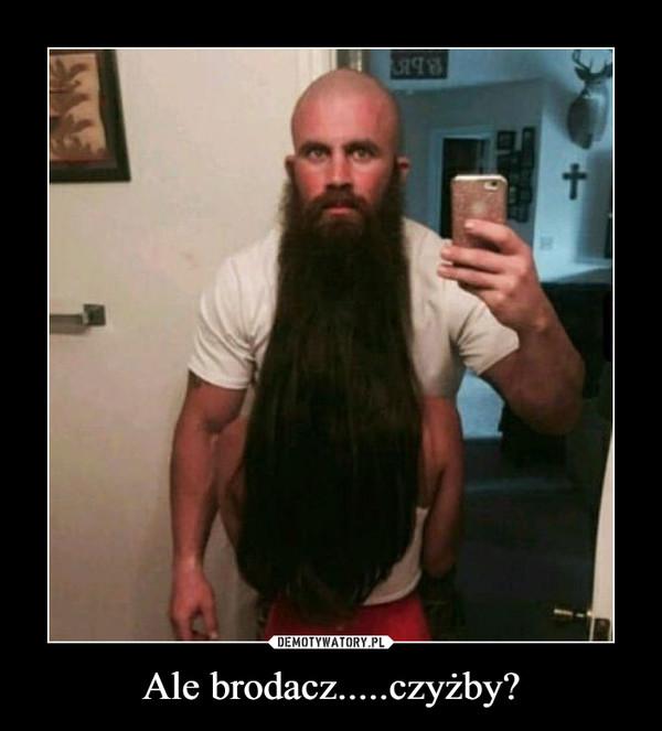 Ale brodacz.....czyżby? –