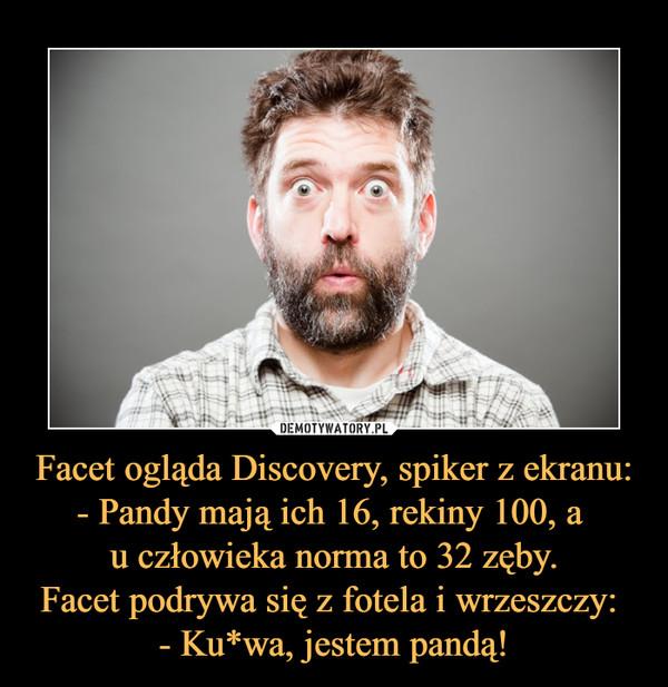 Facet ogląda Discovery, spiker z ekranu:- Pandy mają ich 16, rekiny 100, a u człowieka norma to 32 zęby.Facet podrywa się z fotela i wrzeszczy: - Ku*wa, jestem pandą! –