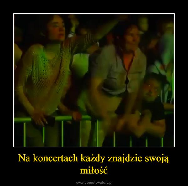 Na koncertach każdy znajdzie swoją miłość –