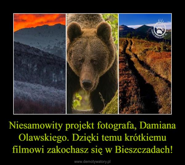 Niesamowity projekt fotografa, Damiana Olawskiego. Dzięki temu krótkiemu filmowi zakochasz się w Bieszczadach! –
