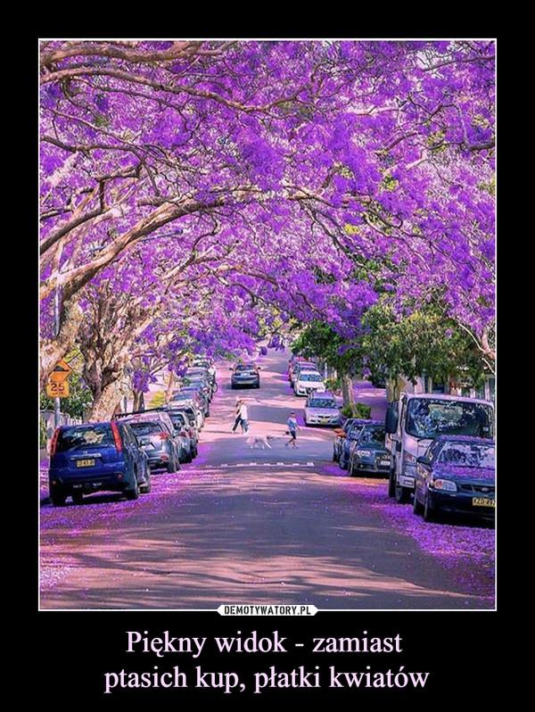 Piękny widok - zamiast ptasich kup, płatki kwiatów –