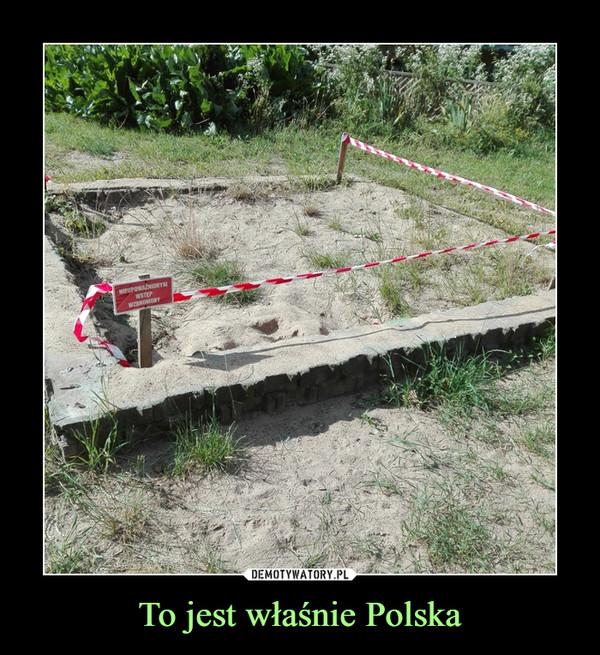 To jest właśnie Polska –