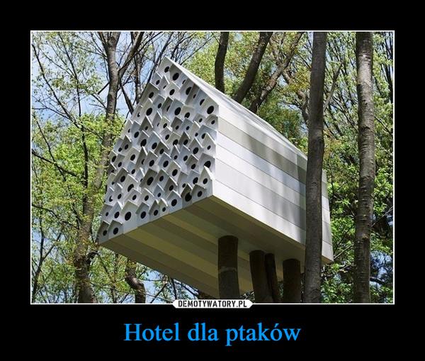 Hotel dla ptaków –