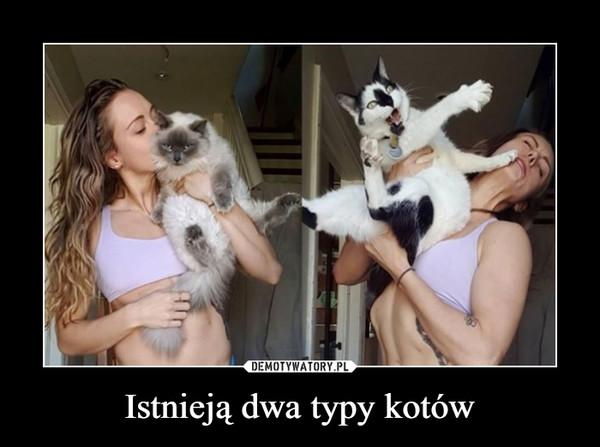 Istnieją dwa typy kotów –