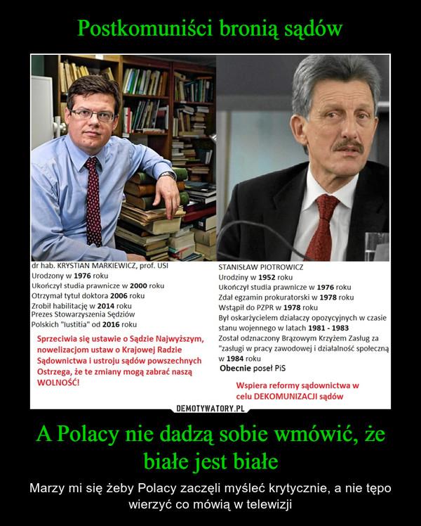 A Polacy nie dadzą sobie wmówić, że białe jest białe – Marzy mi się żeby Polacy zaczęli myśleć krytycznie, a nie tępo wierzyć co mówią w telewizji